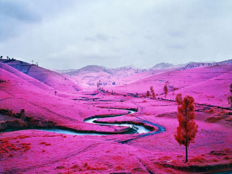 Stunning pictures by Richard Mosse shot on Kodak Aerochrome, a discontinued reconnaissance infrared film